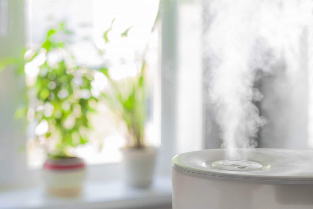 Using a humidifier can increase your comfort